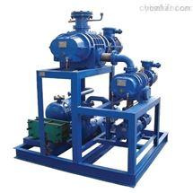 申报电力四级承试资质材料--真空泵