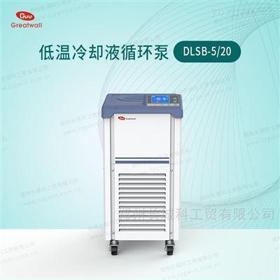 DLSB-5/20B郑州长城科工贸新款低温冷却液循环泵