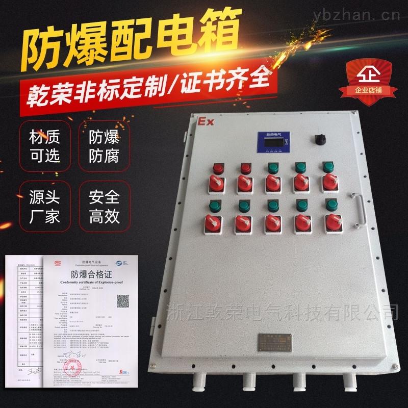 应急照明集中电源防爆箱