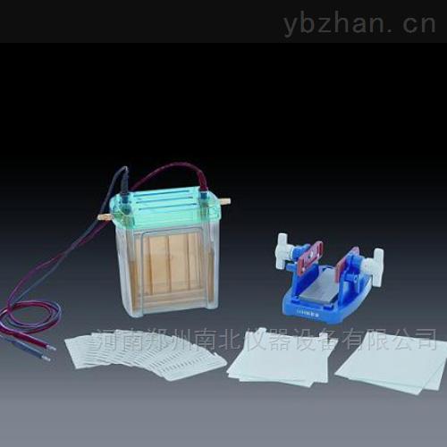 DYCZ-24EN双垂直电泳仪(槽)