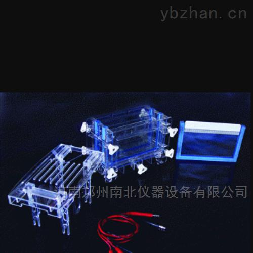 DYCZ-30C双板夹芯式垂直注塑电泳仪(槽)