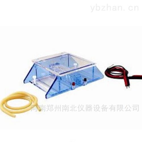 DYCP-43BDNA回收电泳仪(槽)
