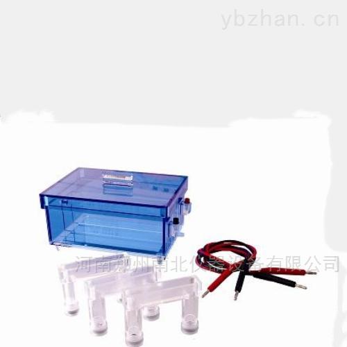 DYCP-43蛋白质回收电泳仪(槽)