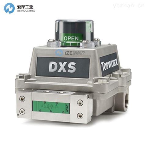 TOPWORX阀门控制器DXS-L21BNEB0000B