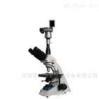 BM-37XBC电脑型倒置生物显微镜