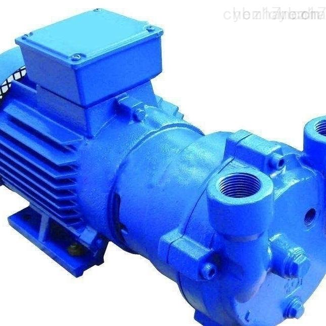 二级承装修试电力设施设备*真空泵