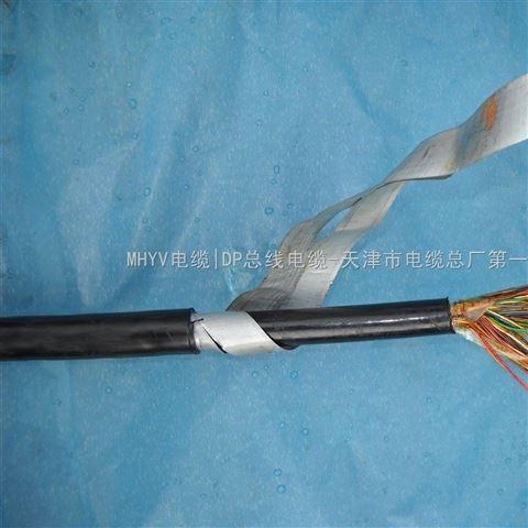 铠装市话通讯电缆HYA553 HYAT53(标准)