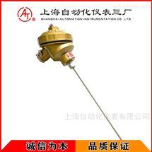 WRNK-131铠装热电偶
