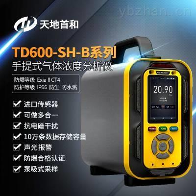 TD600-SH-B-O2手提式氧气分析仪可选配无线传输功能