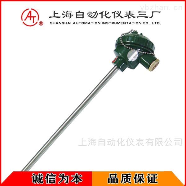 WZP2-131-F双支耐腐型热电阻