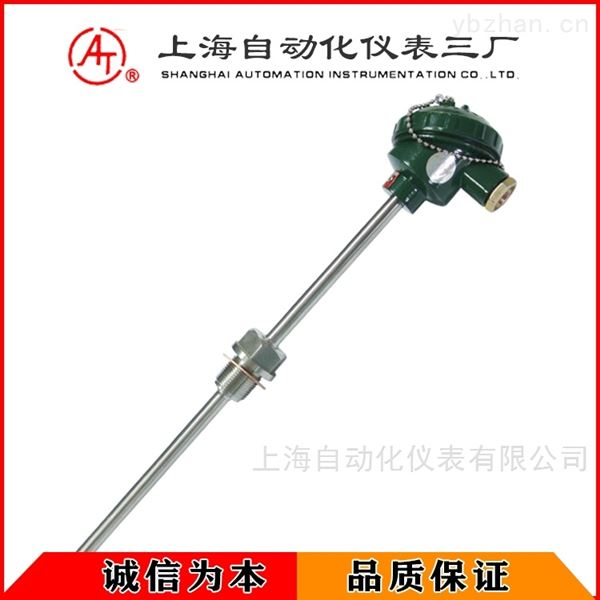 WZP-231-F耐腐型热电阻