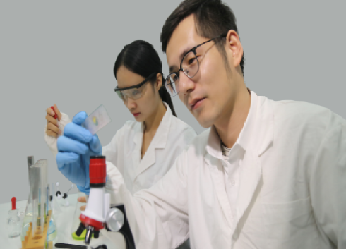中國學者實現二維石墨烯的室溫鐵磁性,突破自旋電子器件瓶頸
