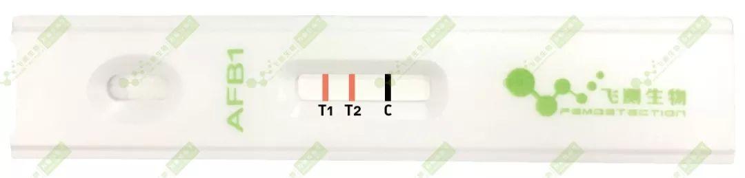 双T线检测定量法