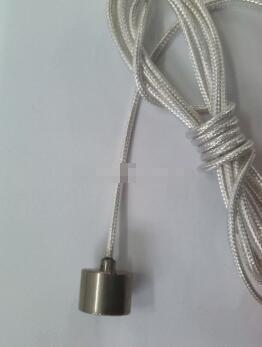 磁性铂热电阻