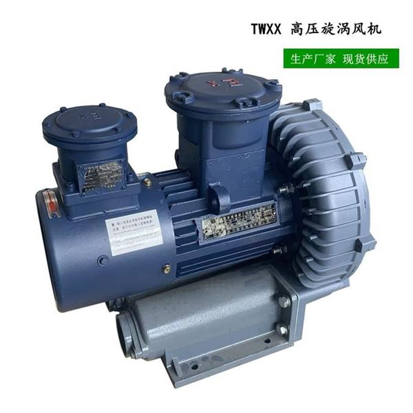 2.2kw耐高温防爆旋涡气泵